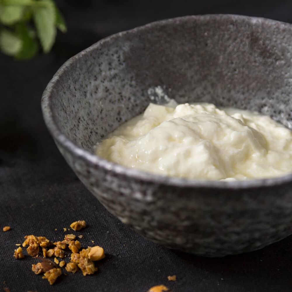 Joghurt vom Erdhof Erdwalde in Schale